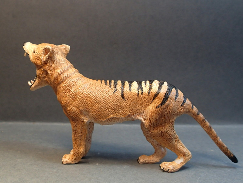 The thylacine from Southlands Replicas, - item no 00000 :-D Southland00000c_zpss06ypv26