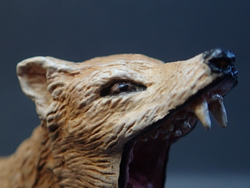 The thylacine from Southlands Replicas, - item no 00000 :-D Southland00000eye_zps1o4tef87