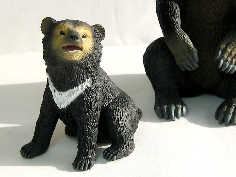 The Asian black bear :-D Abear3