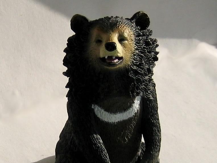 The Asian black bear :-D Abear5