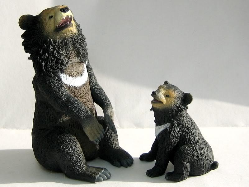 The Asian black bear :-D Abear7