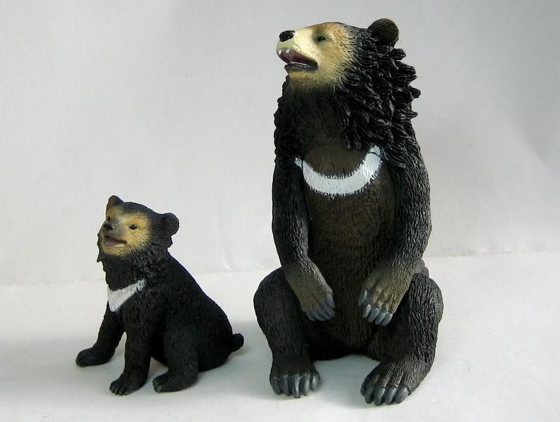 The Asian black bear :-D Abear8