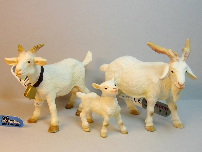 A great gift from Bojan, - and various new and old Bullylands ;-) Bullygoatsnew
