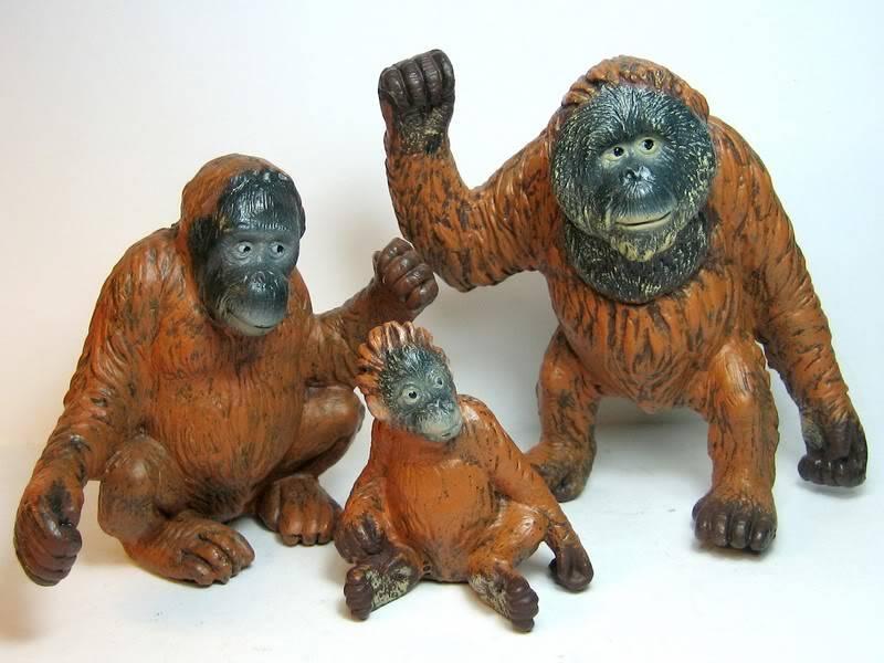 Baby urangutan and some new dogs Bullyorangs3