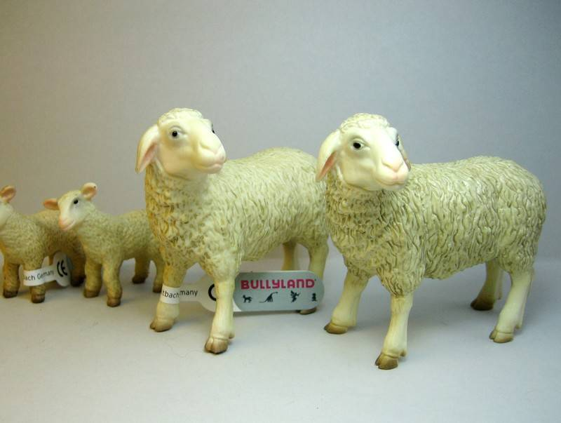 A great gift from Bojan, - and various new and old Bullylands ;-) Bullytwosheep