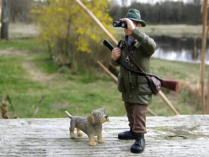 A hunter on my terrace :-o Hunter6