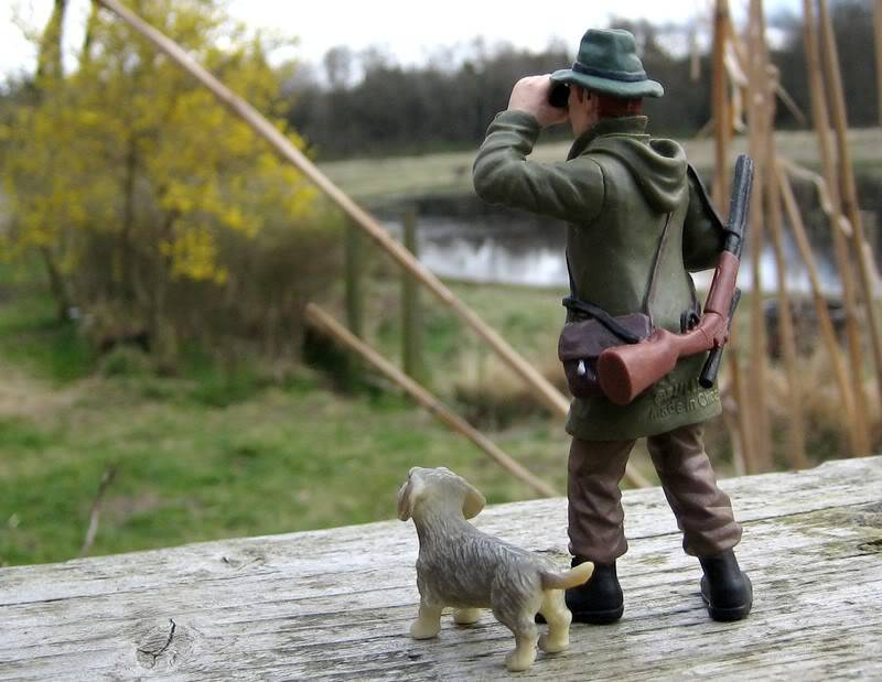 A hunter on my terrace :-o Hunter7