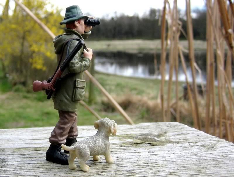 A hunter on my terrace :-o Hunter8