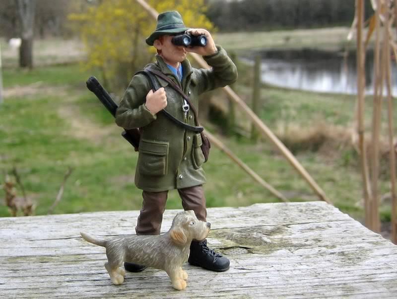 A hunter on my terrace :-o Hunter9