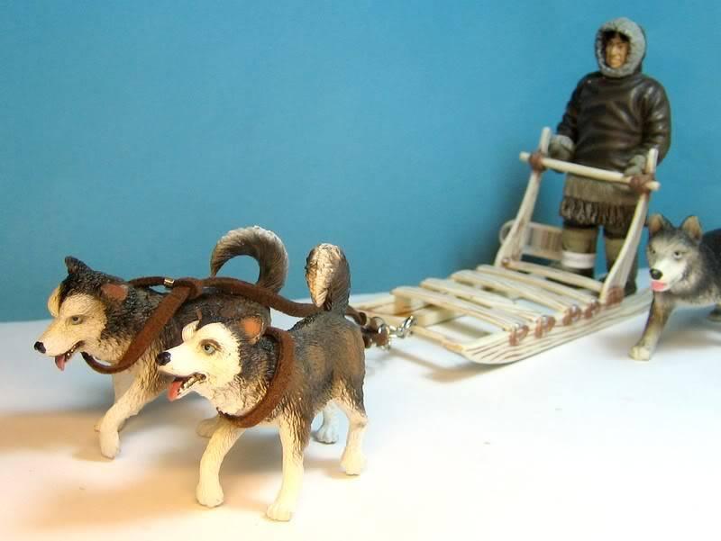 Baby urangutan and some new dogs Inuitsledge