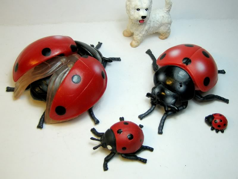 Susanne's Bullyland additions - Page 6 Ladybugs