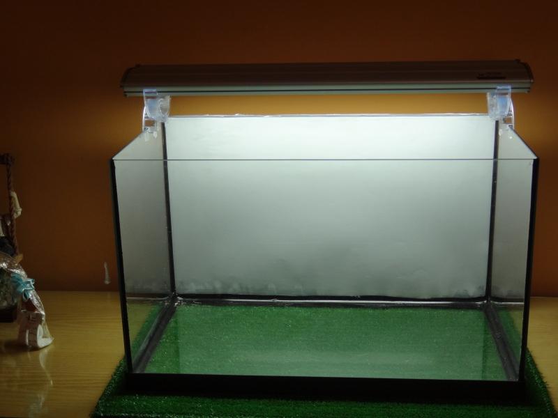 adios acuario panoramico de 76l y hola acuario rectangular de 60l DSC01361_zpsb9b1909e