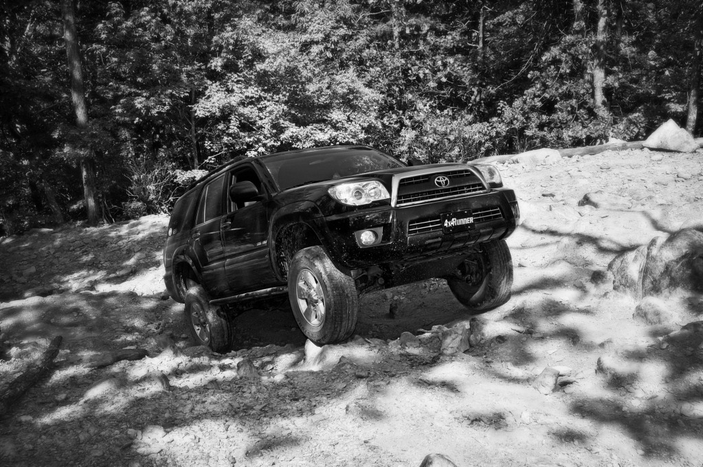 Uwharrie Trip May 25th/26th - Page 9 DSC_0013_bw