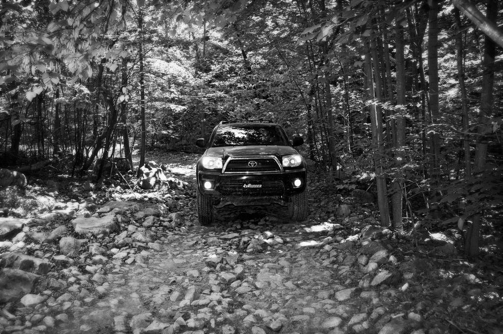 Uwharrie Trip May 25th/26th - Page 9 DSC_0027_bw