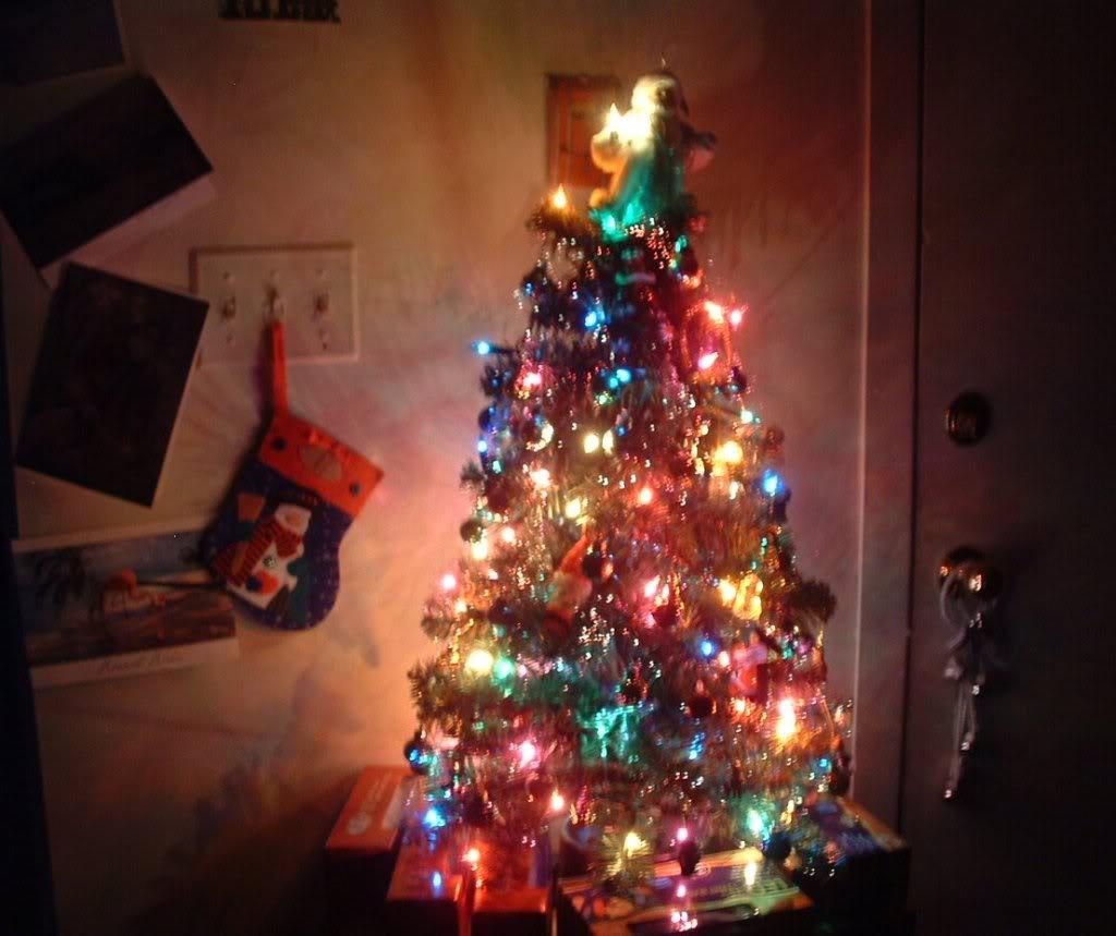 Trish's Tree Dscf0017