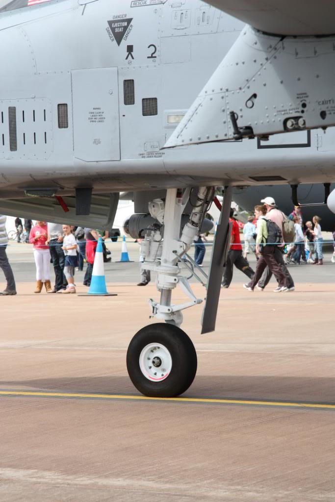 A-10a Thunderbolt II 47th fighter Sqd   Italeri 1-48 IMG_2984