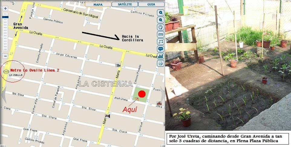 Nuevo Taller de Huertos Urbanos de Vive lo Verde - 2012 Finalizando