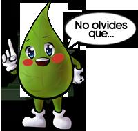 Bichitos en mi naranjo. Globo09