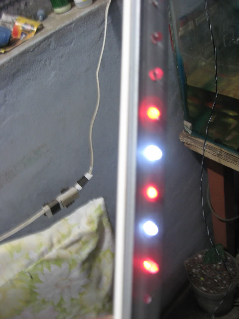 costo y forma de hacer luces led IMG_2534