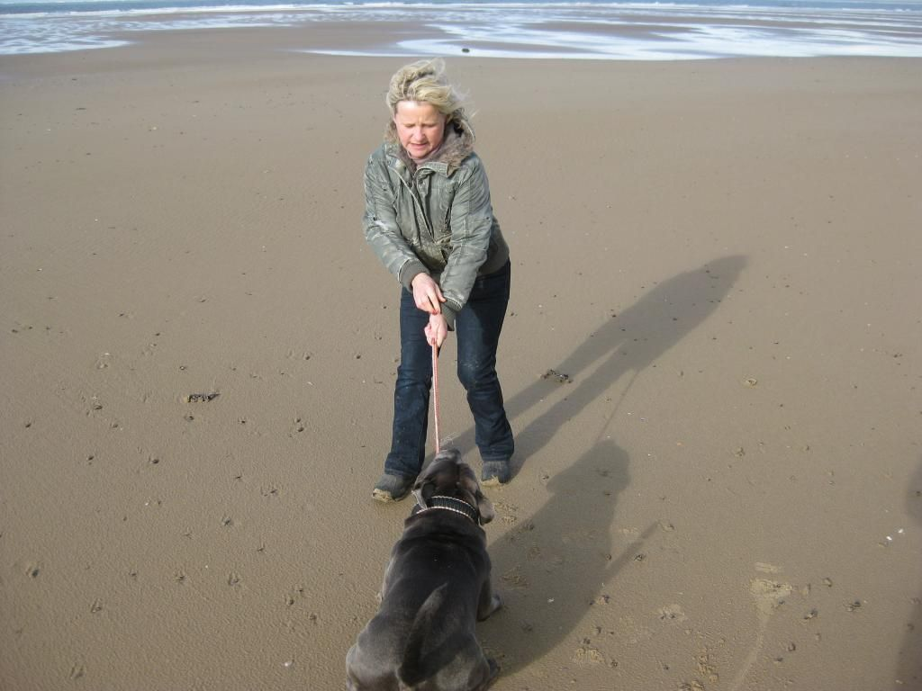 More Vinnie on the beach! (pic heavy)  IMG_4602_zps78fc970d