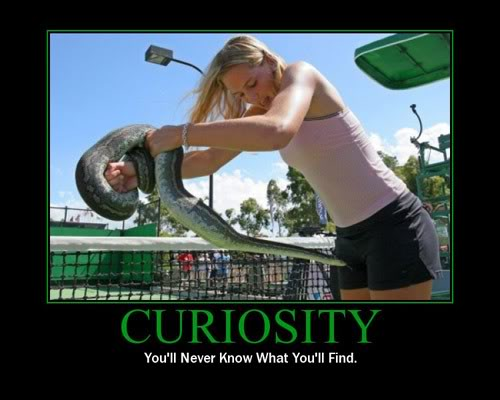 The Demotivational Picture Thread Curiosity