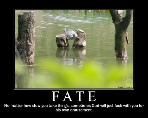 The Demotivational Picture Thread Fate