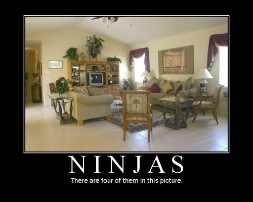 The Demotivational Picture Thread Ninjas