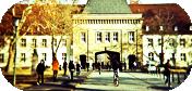 Academia Luna Eterna
