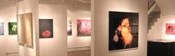 {#}Gallery