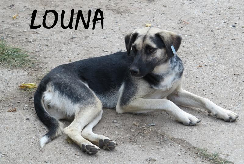 Parrainage de Louna 2