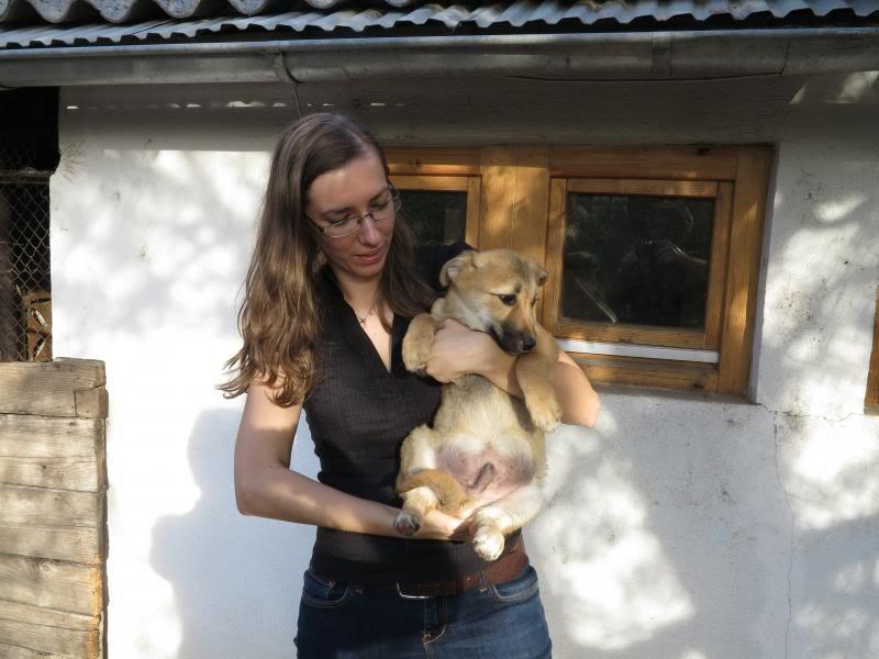 Le petit Rony dit Georges - Daniel, petite crevette né en juillet 2013 IMG_0877