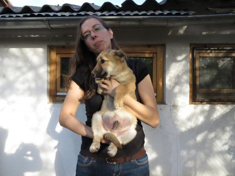 Le petit Rony dit Georges - Daniel, petite crevette né en juillet 2013 IMG_0888