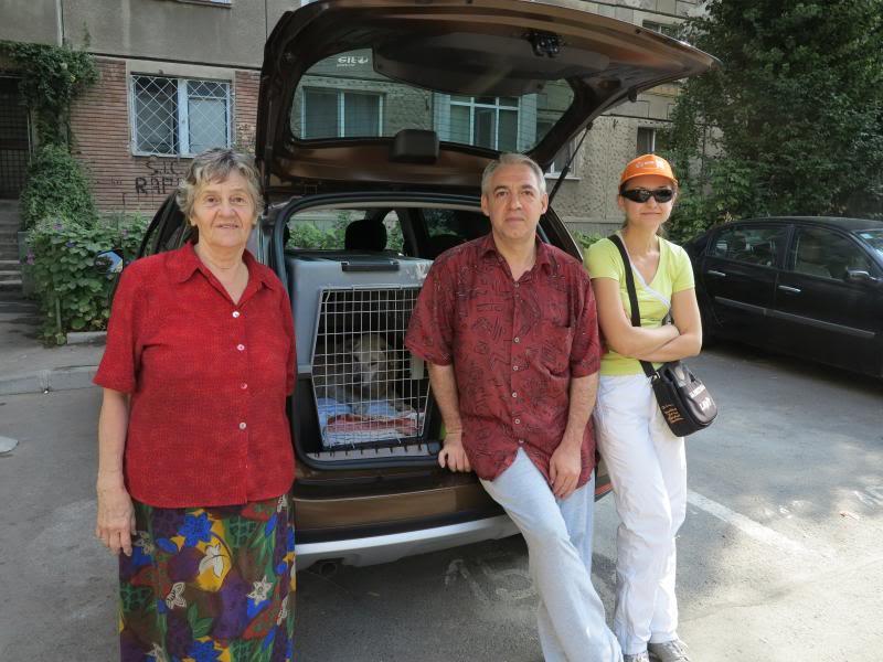 Cali, vielle chienne du quartier d'Irina, Monica et Avedis - décédée IMG_9394