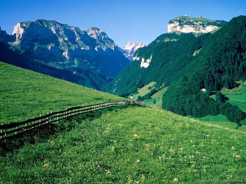 Альпийские Луга 7-1
