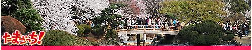 Parques y jardines Shinjukuigoyem_zps07e872a1