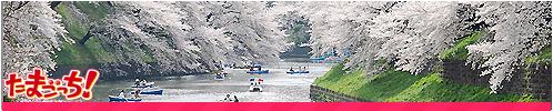 Parques y jardines Ueno_zps90d030ef