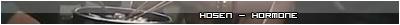 Sobre los grupos delincuentes. [Inscripciones] Hosenhormone