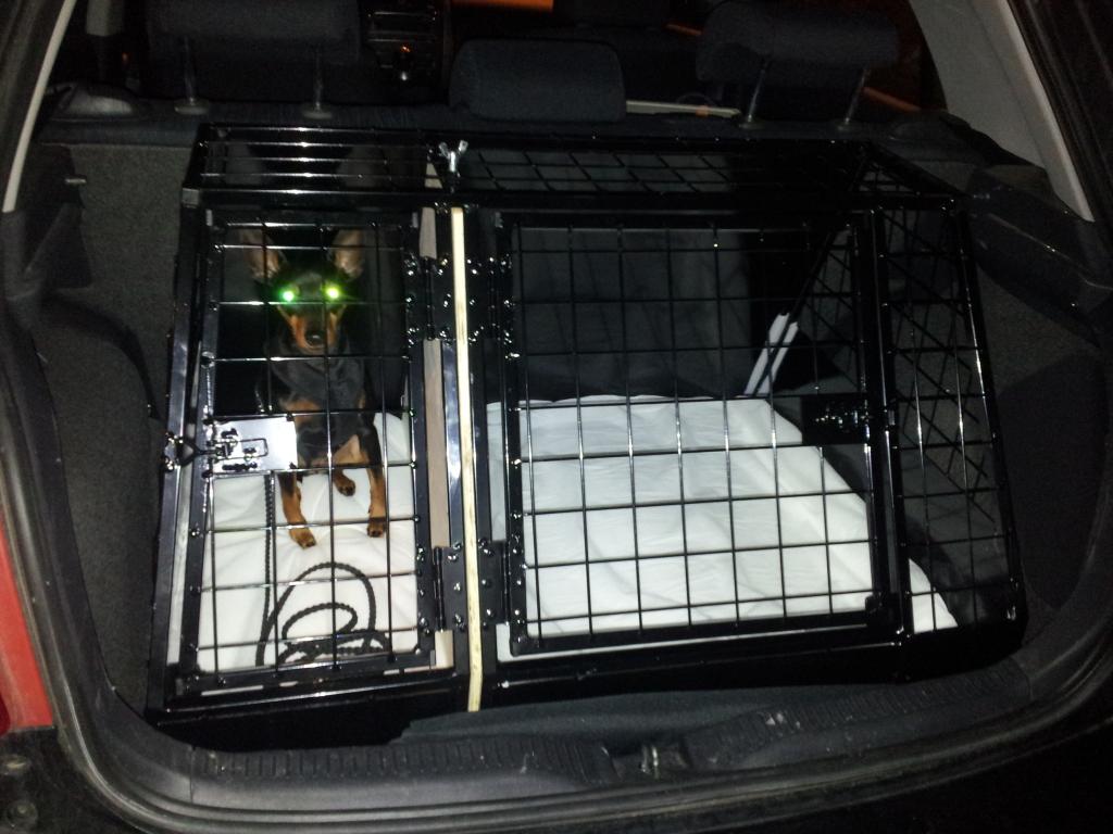 Dere som har sprinkel/nettingbur i bilen (Kela eller andre) 20120908_215655