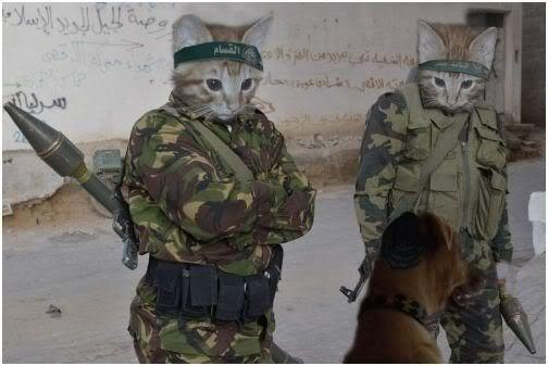 Batu Excelsior - Page 2 Armycats