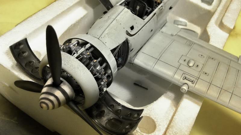 Project Arado Ar 196 A3 - Revell 1:32 + ship catapult HpH 1:32 IMG_3654