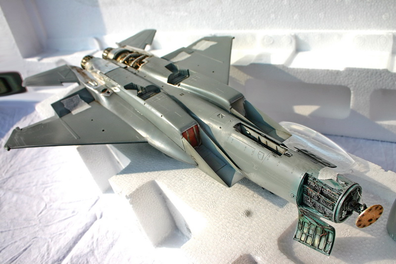 Boeing  F-15Ds  Israeli Air Force - G.W.H. kit 1/48 scale model IMG_2721%202
