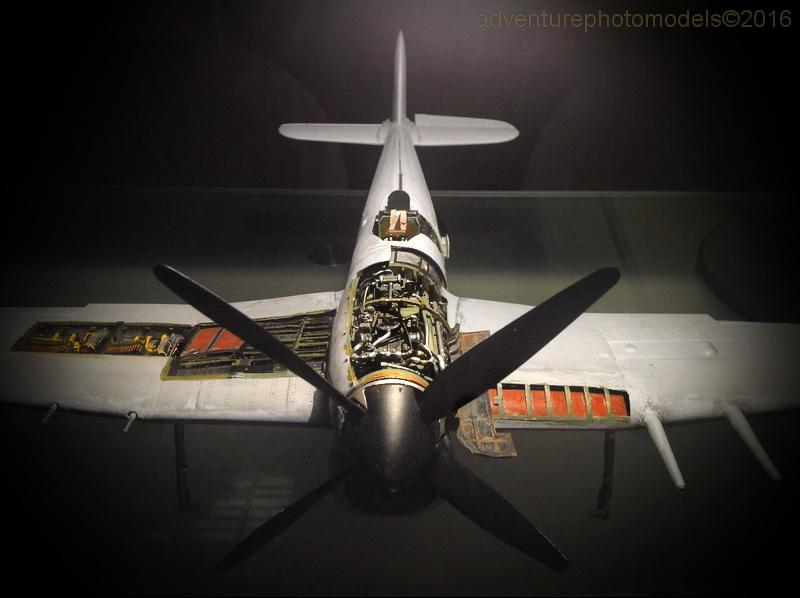 "Hawker Typhoon MKIb ""What else!"" IMG_6142"