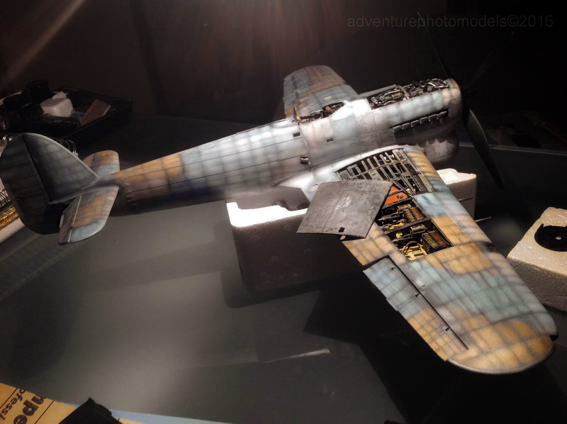 "Hawker Typhoon MKIb ""What else!"" IMG_6728"