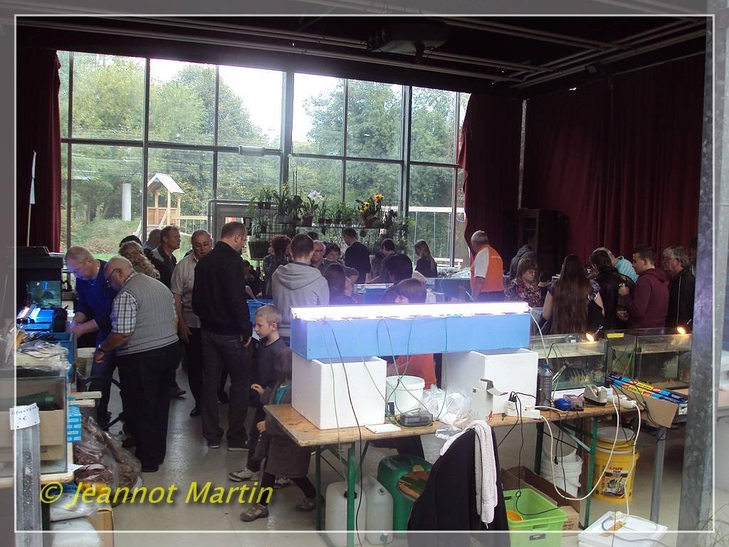 Grande Bourse Aquariophile de Liège - 20 octobre 2013 Standsdivers2