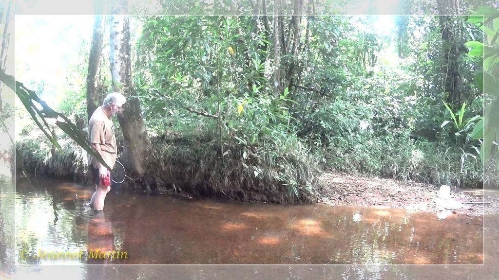 Guyane 2014 Criqueblanche2