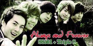 Final Year Project!! SS501b