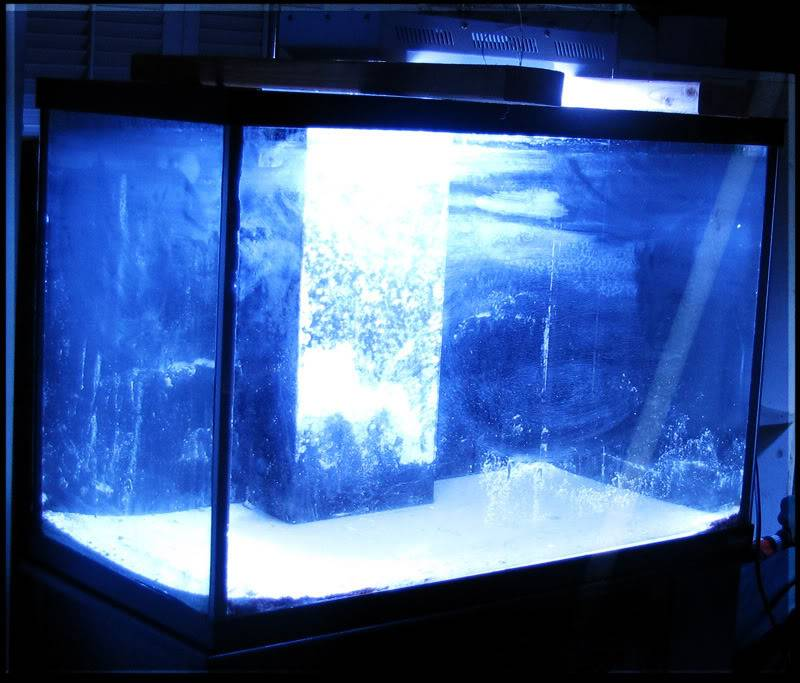 Project: Jenova... a Psychopath's LED Powered Tech 70g Dream......  Projectunknown