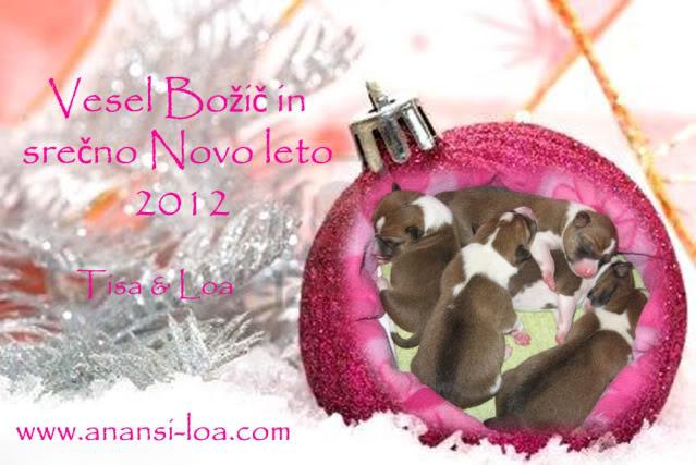 Novoletne čestitke 2012 SrenoNovoleto2012