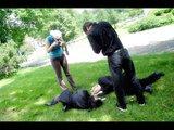 Montreal Cosplay Photoshoot 9 Th_photogzIMG_0151