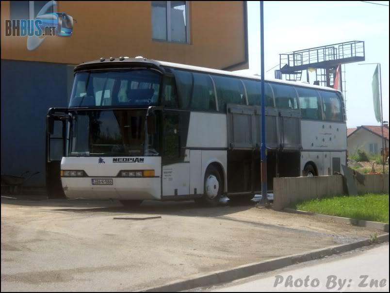 Međeđa promet, Sapna  DSCN0512